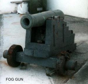 Fog Gun